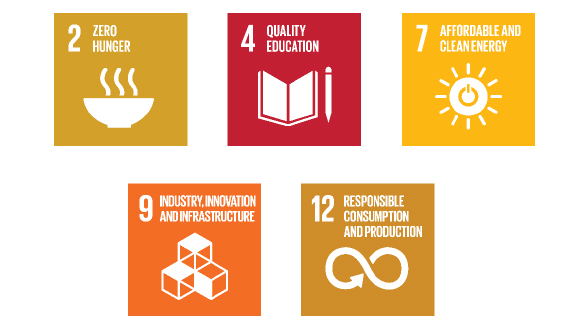 pioritized_SDGs